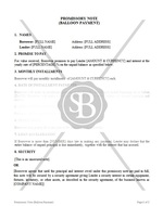 Promissory Note (Balloon Payment)