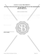 Minutes of EGM of Shareholders for Substitution of Articles