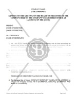 Minutes of the Board Meeting for Financial Statements and Annual Fees