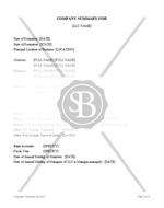 LLC Company Summary