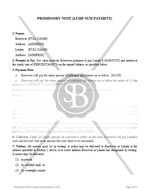 Promissory Note (Lump-Sum Payment)