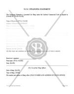 U.C.C.  Financing Statement